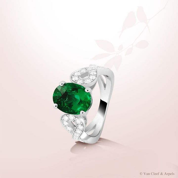 oval-cut-emerald-rings