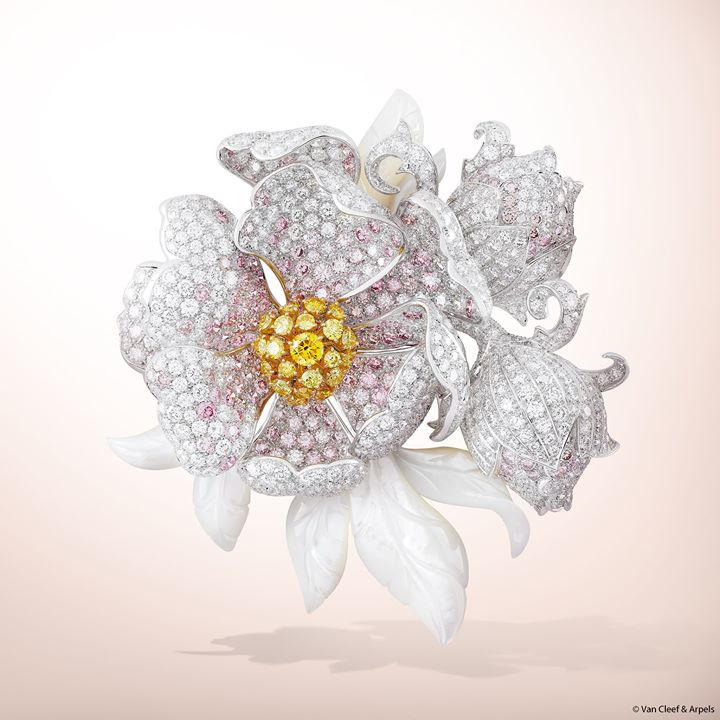 white-pink-yellow-diamond-brooches